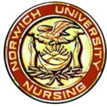 Norwich University Nursing Pin